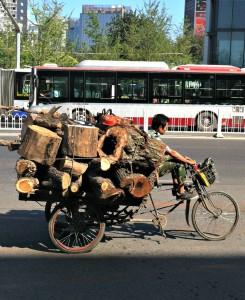 Anybody need some firewood?