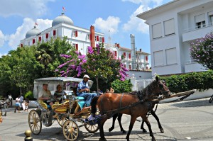 A horse drawn carriage in front of one of the beautiful houses.