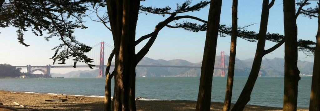 The Golden Gate Bridge peaks out from behind trees at Crissy Field.